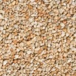Barley Corn